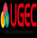 United Graphic Expression Corporation